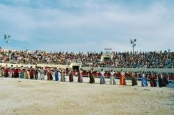 festo-vierginenco-2004.jpg