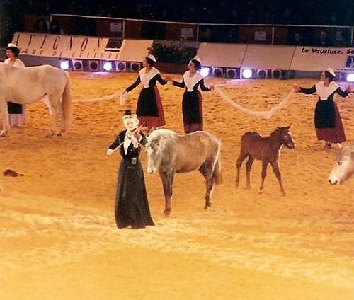 le-gala-cheval-passion