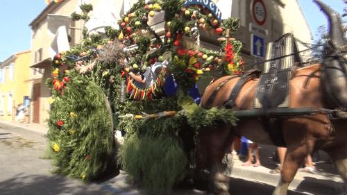Rognonas saint roch 2012 25