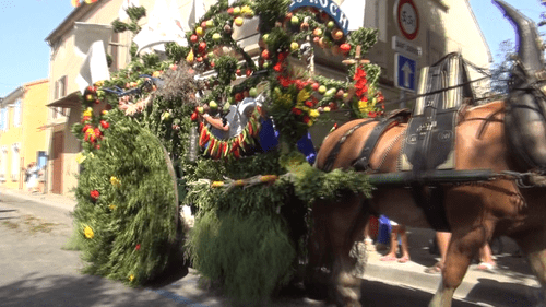 Rognonas saint roch 2012 29